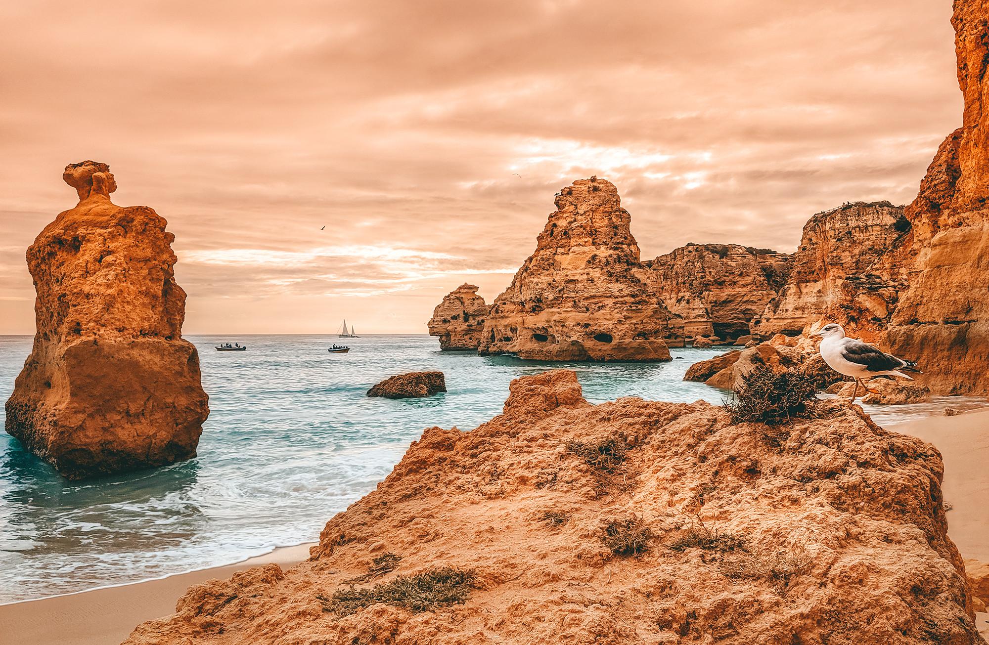 Praia da Marinha View with Seagull