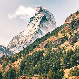 Switzerland Banner.jpg