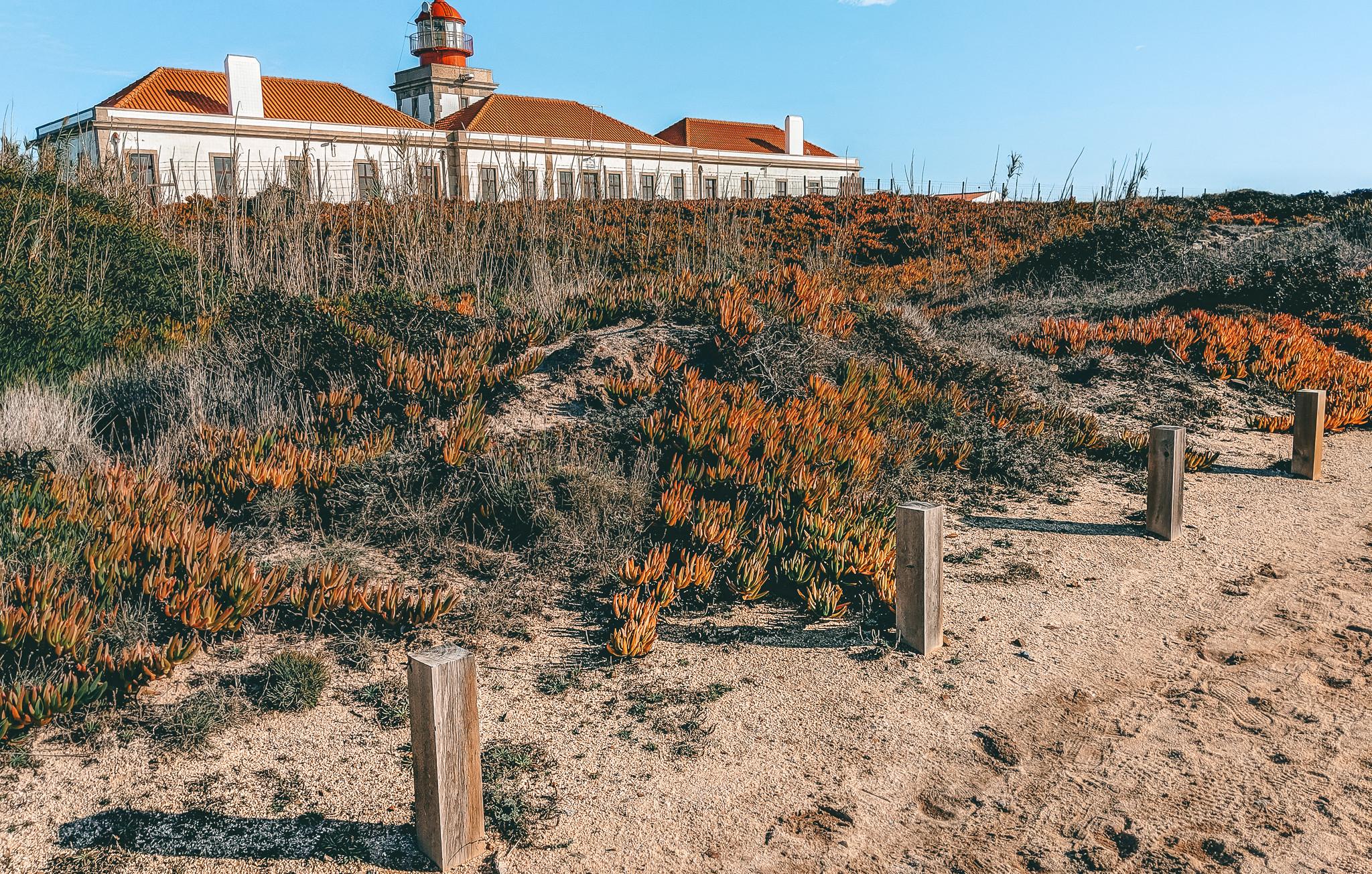 Farol Cabo Sardão Lighthouse