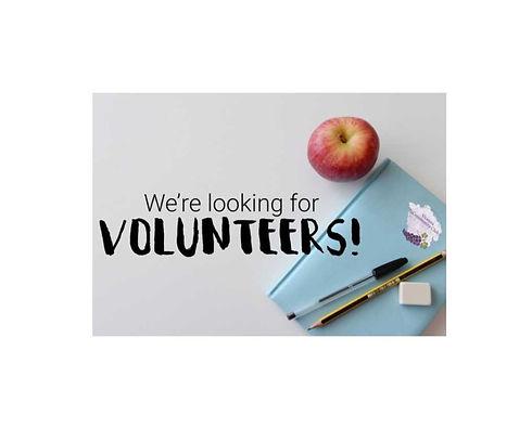 volunteer2_edited_edited.jpg