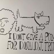#donaldpump
