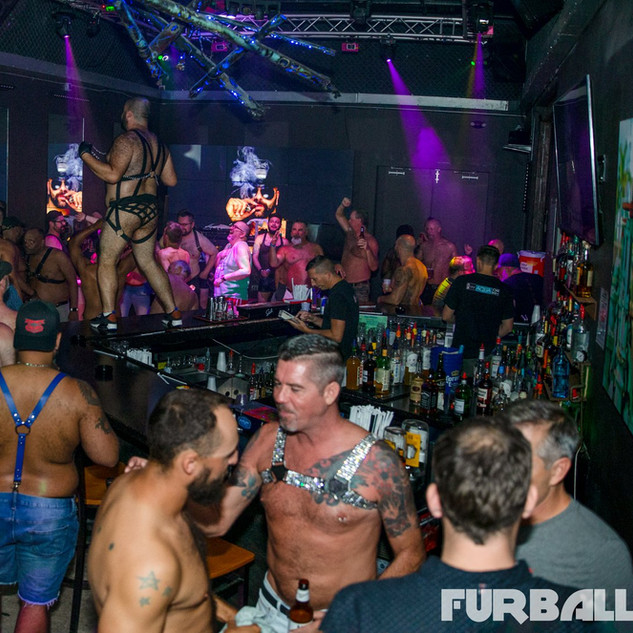 Furball Key West Bear Weekend.jpg