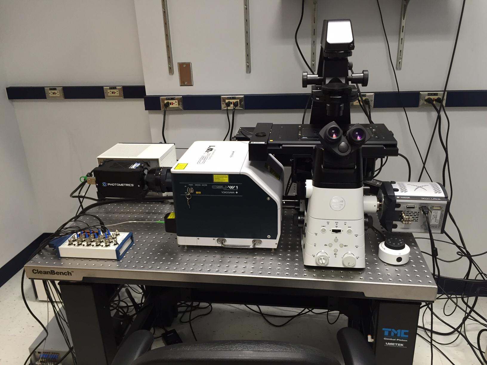 Microscopy fun