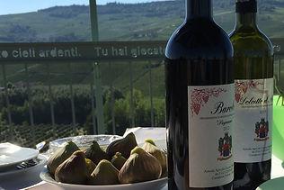 Maya-Marsilio-Piemont-Passion-Reisen-Ferien-Urlaub-Ausflug-Vespa