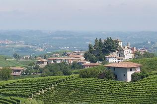 Maya-Marsilio-Piemont-Passion-Reisen-Ferien-Urlaub-Ausflug-Person-Landschaft-La Morra-Mangialonga