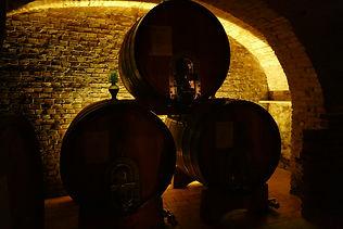 Maya-Marsilio-Piemont-Passion-Reisen-Ferien-Urlaub-Ausflug-Weinkellerei-Weinfässer-Ghisolfi