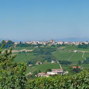 Serralunga_Hügel_Juli_Panorama_Ausschnit