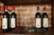 Maya-Marsilio-Piemont-Passion-Reisen-Ferien-Urlaub-Ausflug-Mangialonga-La Morra-Weinfalschen