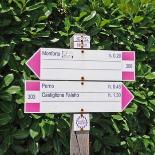 Piemont_Passion_Reisen_Ferien_Wein_Genus