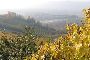 Maya-Marsilio-Piemont-Passion-Reisen-Ferien-Urlaub-Ausflug-Landschaft-Herbst