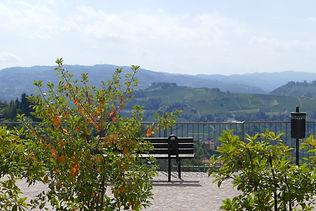 Maya-Marsilio-Piemont-Passion-Reisen-Ferien-Urlaub-Ausflug-Landschaft