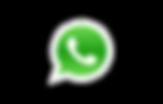 icono wapp.png