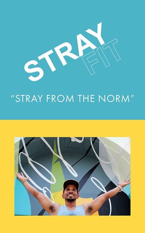 StrayFromTheNorm.jpg