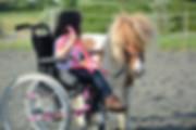 poney et équithérapie Montpellier  écurie Sonjah