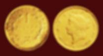 דולר $ זהב אמריקני