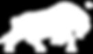white zeronox logo .png