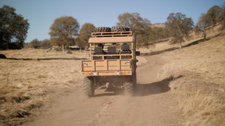 Tuatara on the Trail
