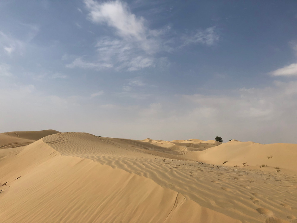 Dubai, Al Qudra Cycle Track