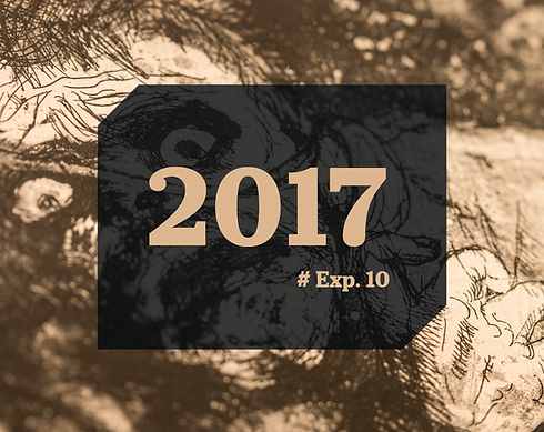 Banner Expos 2017-03.png