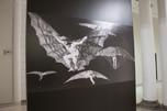 """""""Los Disparates"""" de Goya están en el MUSA"""