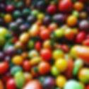 Creme de la Crop Leann. Cherry Tomatoes.