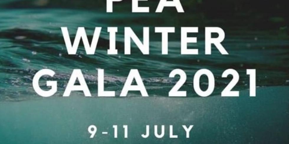 PEA Winter Gala