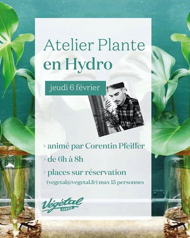 Atelier Hydro chez _vegetalrungis ✨_.jpe
