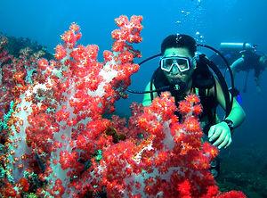 Satang Island Excursion