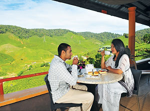 cameron-highlands-tea-plantation-2.jpg