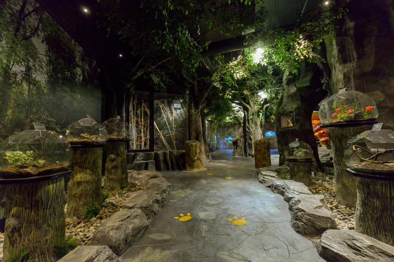 Penang Entopia Understory Tales