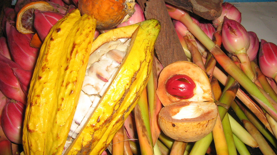 Penang Tropical Spices and Local Fruits
