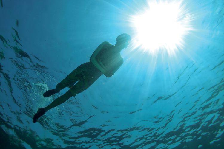 pulau-Pulau Payar Marine Park Snorkeling