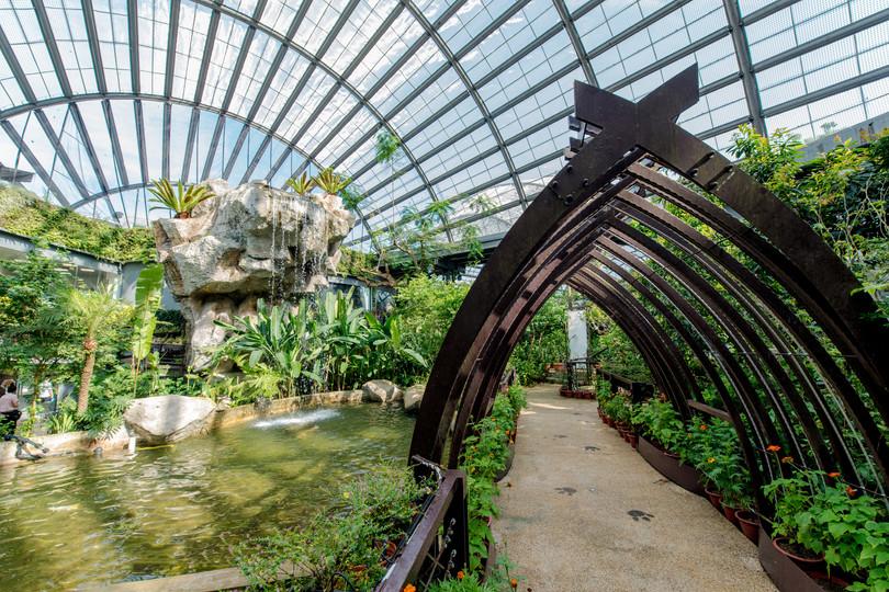 Penang Entopia David's Garden