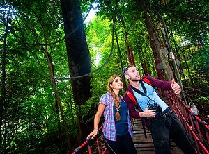 kuala-lumpur-forest-eco-park-3.JPG