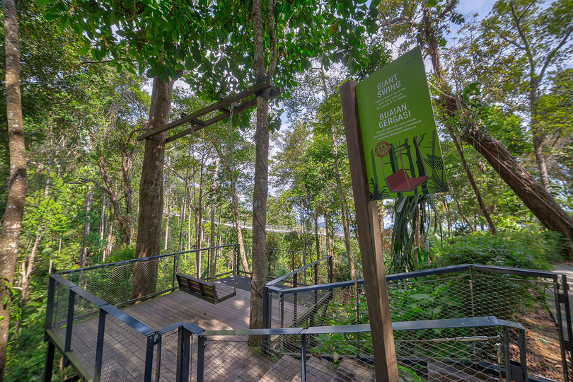 The Habitat Giant Swing