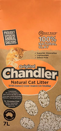 Chandler image (2).jpg