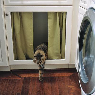 Cat life hacks will make your life easier