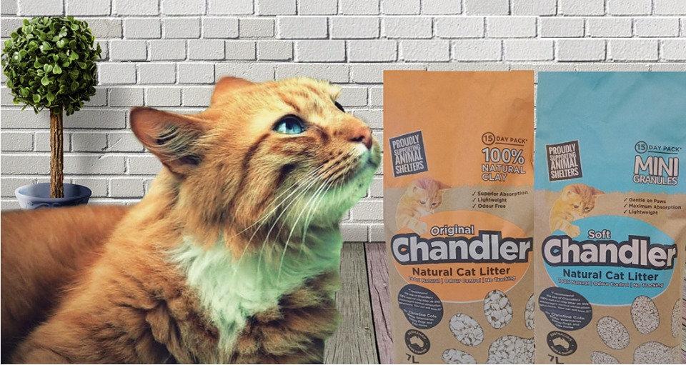 Chandler Home Final_edited.jpg