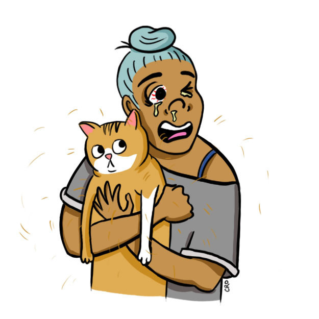 6 struggles cat owners have
