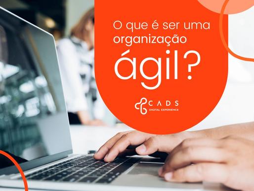 O que é ser uma Organização Ágil?