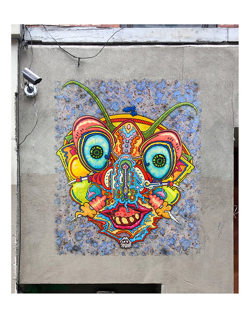Mr Bug | Open Edition Art Print