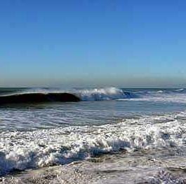 Pacific-Ocean.jpg