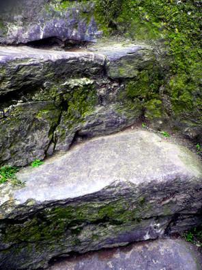climbing-up-to-the-Blarney-.jpg