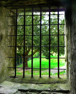 Blarney-Castle2.jpg