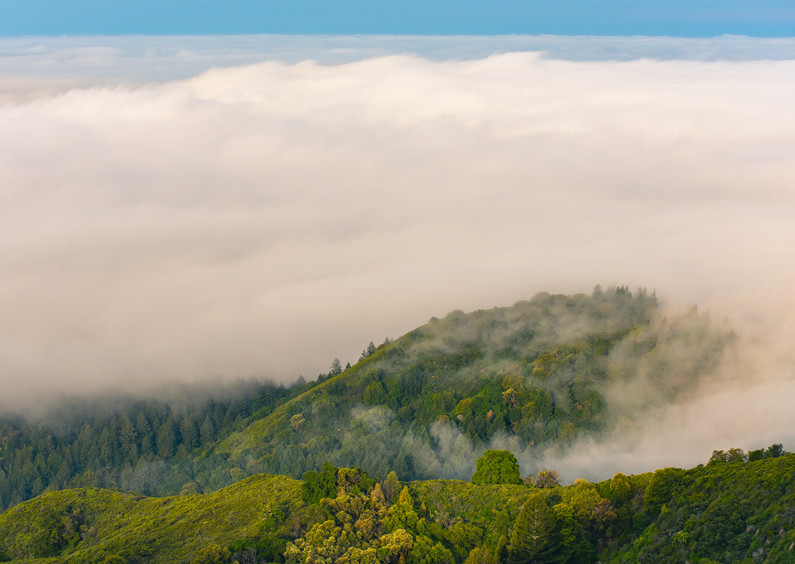 Hike in the clouds (2 of 3).jpg