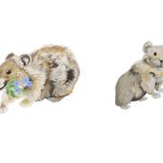 AnimalStudies (5).JPG