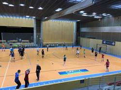 Handball Training Camp in Hungary