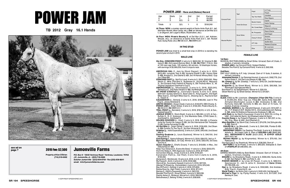 Power Jam Stat Pg (1).jpg