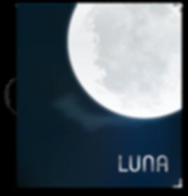 luna_catalogue-288x300.png