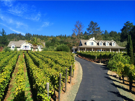New opportunity to run an international artist residency program in St. Helena CA